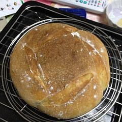 自家製酵母のみのパン